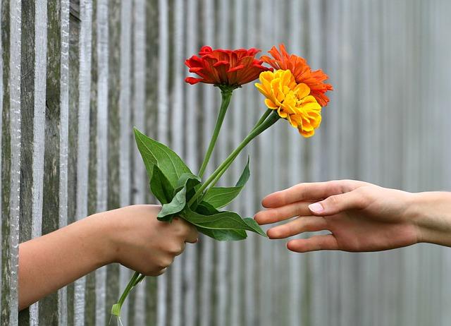 podání květin